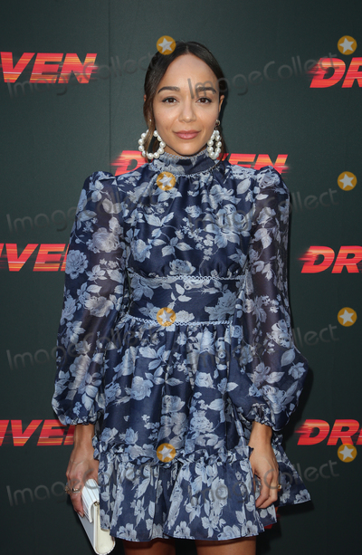 Ashley Madekwe Photo - HOLLYWOOD CA - JULY 29 Ashley Madekwe at The Universal Pictures Home Entertainment Content Groups Los Angeles Premiere Of Driven at ArcLight Hollywood in Hollywood California on July 29 2019 Credit Faye SadouMediaPunch