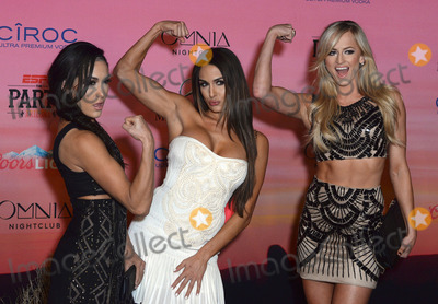 Brie Bella Photo - 30 January 2015 - Scottsdale Arizona - Summer Rae Brie Bella Nikki Bella ESPN The Party held at WestWorld of Scottsdale Photo Credit Keith SparbanieAdMedia