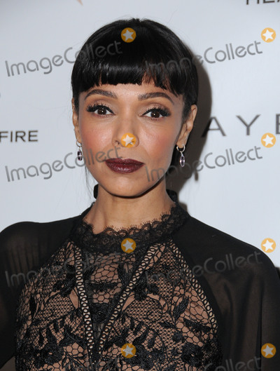 tamara taylor pictures and photos