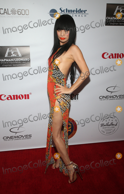 Bai Ling Photo - 18 January 2020 - Hollywood California - Bai Ling At The 2020 SOC Lifetime Achievement Award held at the Loews Hollywood Hotel Photo Credit FSAdMedia