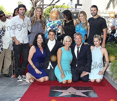 Yolanda Hadid Photo - 31 May 2013 - Hollywood California - Stevie Wonder Brody Jenner Gigi Hadid (top left)Yolanda Hadid David Foster is honored with a star on the Hollywood Walk of Fame Photo Credit Russ ElliotAdMedia