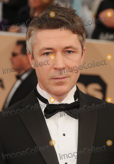 Aidan Gillen Photo - 30 January 2016 - Los Angeles California - Aidan Gillen 22nd Annual Screen Actors Guild Awards held at The Shrine Auditorium Photo Credit Byron PurvisAdMedia