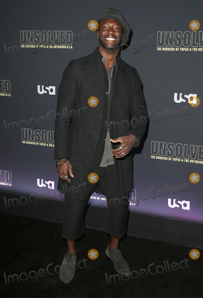 Aldis Hodge Photo - 22 February 2018 - Hollywood California - Aldis Hodge USA Networks Unsolved The Murders of Tupac  The Notorious BIG held at Avalon Hollywood Photo Credit F SadouAdMedia