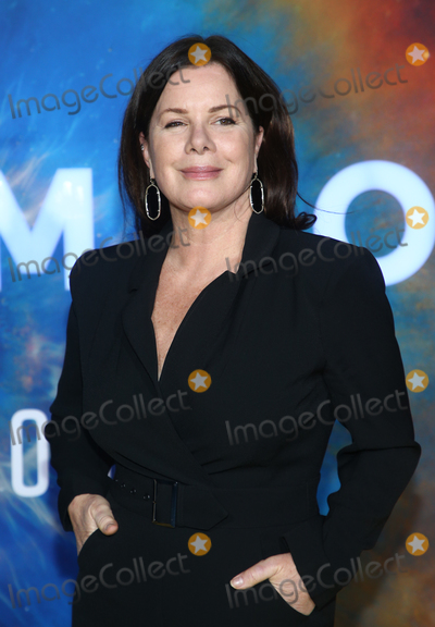 Gay Harden Photo - 26  February 2020 - Westwood California - Marcia Gay Harden National Geographics Cosmos Possible Worlds Los Angeles Premiere held at Royce Hall UCLA Photo Credit FSAdMedia