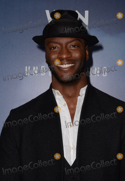 Aldis Hodge Photo - 08 January  - Pasadena Ca - Aldis Hodge Arrivals for the WGN America Winter TCA Tour Underground held at The Langham Hotel Photo Credit Birdie ThompsonAdMedia