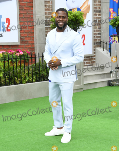 Kevin Hart Photo - 02 June 2019 - Westwood California - Kevin Hart The Secret Lives of Pets 2 Los Angeles Premiere held at Regency Village Theater Photo Credit Birdie ThompsonAdMedia