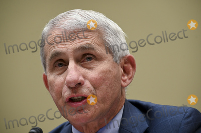 The National Photo - Anthony Fauci director of the National Institute of Allergy and Infectious Diseases during a House Select Subcommittee on the Coronavirus Crisis hearing in Washington DC US on Friday July 31 2020 Trump administration officials are set to defend the federal governments response to the coronavirus crisis at the hearing hosted by a House panel calling for a national plan to contain the virusCredit Erin Scott  Pool via CNPAdMedia
