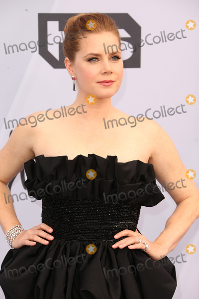 Amy Adams Photo - 27 January 2019 - Los Angeles California - Amy Adams 25th Annual Screen Actors Guild Awards held at The Shrine Auditorium Photo Credit Faye SadouAdMedia