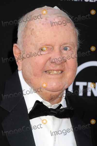 Dick Van Patten Photo - 6 June 2013 - Hollywood California - Dick Van Patten 41st Annual AFI Life Achievement Award Honoring Mel Brooks held at the Dolby Theatre Photo Credit Byron PurvisAdMedia