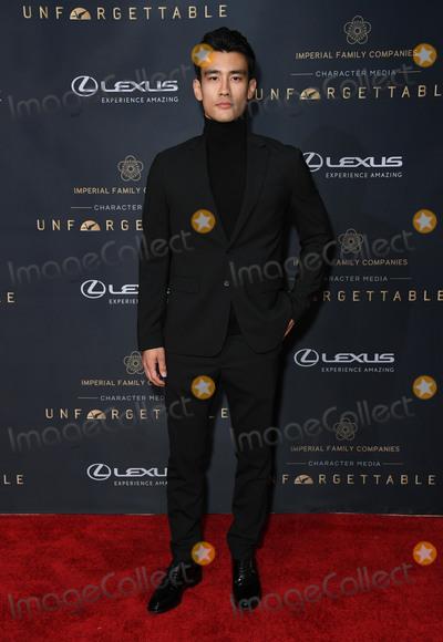 Alex Landi Photo - 14 December 2019 - Beverly Hills California - Alex Landi Unforgetttable Gala 2019 held at Beverly Hilton Hotel Photo Credit Birdie ThompsonAdMedia