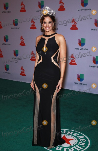 Aleyda Ortiz Photo - 20 November 2014 - Las Vegas Nevada -  Aleyda Ortiz  15th Annual Latin Grammy Arrivals at MGM Grand Garden Arena  Photo Credit MJTAdMedia