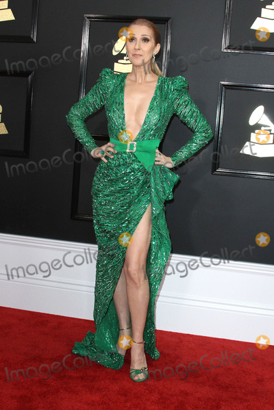 Cline Dion Photo - 12 February 2017 - Los Angeles California - Cline Dion 59th Annual GRAMMY Awards held at the Staples Center Photo Credit AdMedia
