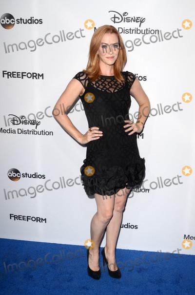 Annie Wersching Photo - Annie Werschingat the 2017 ABC International Upfronts Disney Studios Burbank CA 05-21-17
