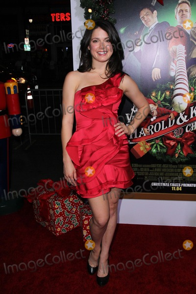 Ali Cobrin Photo - Ali Cobrinat the A Very Harold  Kumar 3D Christmas Los Angeles Premiere Chinese Theater Hollywood CA 11-2-11