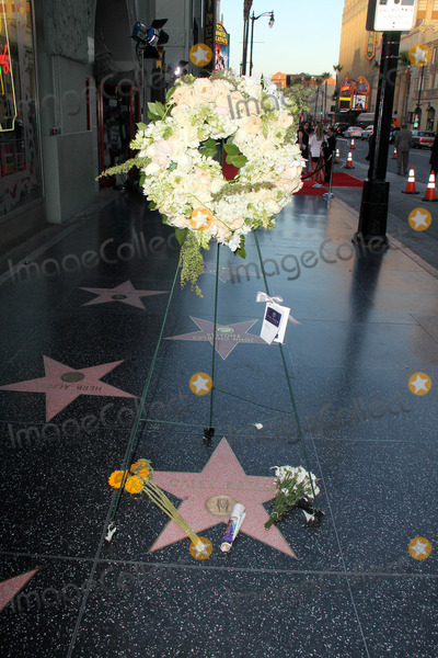 Casey Kasem Photo - Flowers on Casey Kasems Star on the Hollywood Walk of Fame Hollywood CA 06-17-14