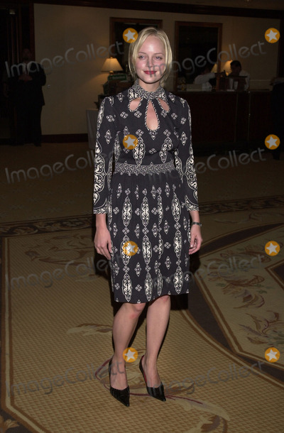 Marley Shelton Photo -  Marley Shelton at the American Oceans Campaign 80th Annual Partners Award Dinner Century Plaza Hotel Century City 10-02-01