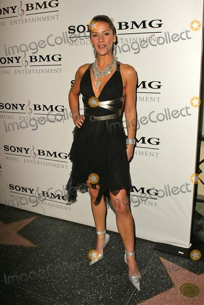 Amanda Byram Photo - Amanda Byram at the SONYBMG Grammy Party 2005 Roosevelt Hotel Hollywood CA 02-13-05