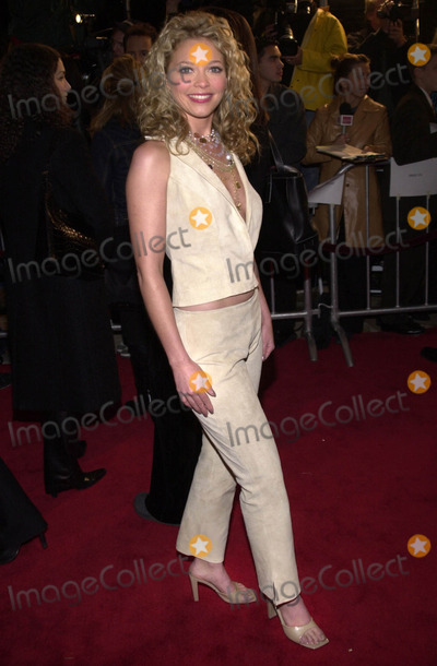 Amanda Detmer Photo -  Amanda Detmer at the premiere of Columbia Pictures Saving Silverman at Manns Village Theater Westwood 02-07-01