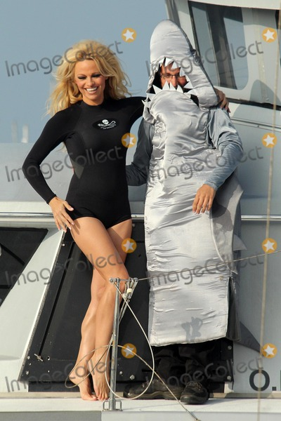Brigitte Bardot Photo - Pamela Andersonat a press conference aboard the Sea Shepherds SSS Brigitte Bardot to  launch their  Operation Zero Tolerance Antarctic Whale Defense Campaign Fishermans Village Marina Del Rey CA 11-02-12