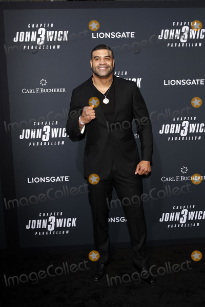 Shawne Merriman Photo - LOS ANGELES - MAY 15  Shawne Merriman at the John Wick Chapter 3 Parabellum Los Angeles Premiere at the TCL Chinese Theater IMAX on May 15 2019 in Los Angeles CA
