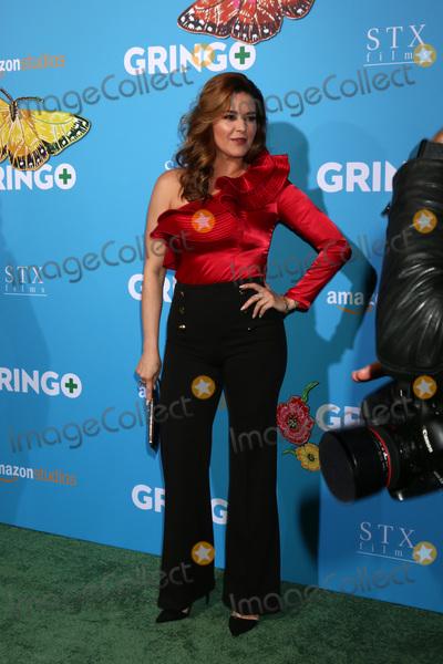 Alicia Machado Photo - LOS ANGELES - MAR 6  Alicia Machado at the Gringo Premiere at Regal LA Live on March 6 2018 in Los Angeles CA