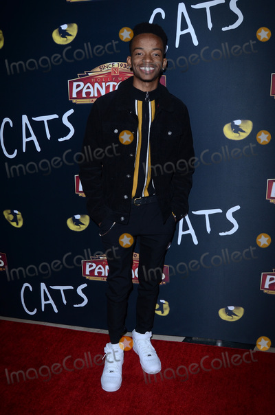 Coy Stewart Photo - LOS ANGELES - FEB 27  Coy Stewart at the Cats Play Opening at the Pantages Theater on February 27 2019 in Los Angeles CA