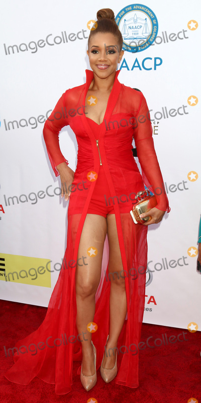 Chrystee Pharris Photo - LOS ANGELES - FEB 11  Chrystee Pharris at the 48th NAACP Image Awards Arrivals at Pasadena Conference Center on February 11 2017 in Pasadena CA