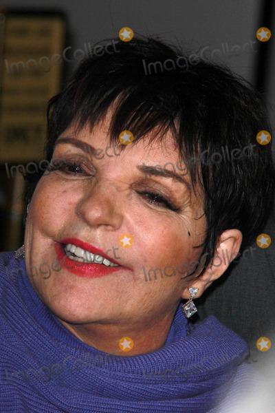 Liza Minelli Photo - LOS ANGELES - FEB 20  Liza Minelli at the LA Italia Film Festival Closing Night Gala at a TCL Chinese 6 Theaters on February 20 2015 in Los Angeles CA