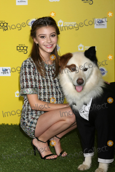 G Hannelius Photo - LOS ANGELES - JAN 10  G Hannelius Mick at the CW Network presents World Dog Awards at a Barker Hanger on January 10 2015 in Santa Monica CA
