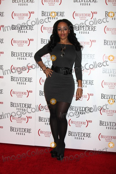 Melyssa Ford Photo - LOS ANGELES - FEB 10  Melyssa Ford arrives at the Belvedere RED Special Edition Bottle Launch at Avalon on February 10 2011 in Los Angeles CA