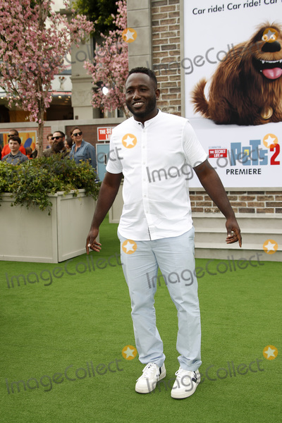Hannibal Buress Photo - LOS ANGELES - JUN 2  Hannibal Buress at the The Secret Life of Pets 2 Premiere at the Village Theater on June 2 2019 in Westwood CA