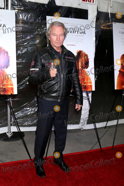 John  Savage Photo - LOS ANGELES - DEC 4  John Savage at the If Beale Street Could Talk Screening at the ArcLight Hollywood on December 4 2018 in Los Angeles CA