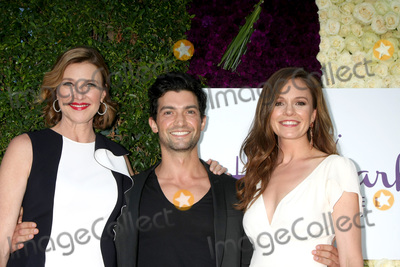 David Alpay Photo - Gavin OConnorLOS ANGELES - JUL 29  Brenda Strong David Alpay Rachel Boston at the Hallmark 2015 TCA Summer Press Tour Party at the Private Residence on July 29 2015 in Beverly Hills CA