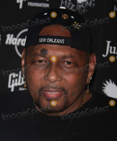 Aaron Neville Photo - New York New York 5-31-08Aaron NevilleIcons of Music II Auction Hard Rock CafeDigital photo by Mary Duggan-PHOTOlinknet