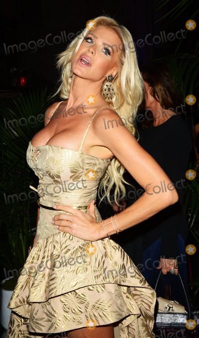Victoria Silvstedt Photo - Photo by Patricia SchleinstarmaxinccomSTAR MAX2017ALL RIGHTS RESERVEDTelephoneFax (212) 995-11969717Victoria Silvstedt at the Alcides  Rosaura (ARD) Foundations A Brazilian Night in New York City
