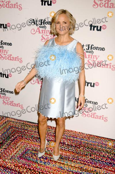 Amy Sedaris Photo - Photo by Dennis Van TinestarmaxinccomSTAR MAX2017ALL RIGHTS RESERVEDTelephoneFax (212) 995-1196101917Amy Sedaris at a screening of At Home With Amy Sedaris in New York City