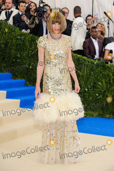 Anna Wintour Photo - Photo by ESBPstarmaxinccomSTAR MAXCopyright 2017ALL RIGHTS RESERVEDTelephoneFax (212) 995-11965117Anna Wintour at the 2017 Costume Institute Gala - Rei KawakuboComme des Garcons Art Of The In-Between(Metropolitan Museum of Art NYC)