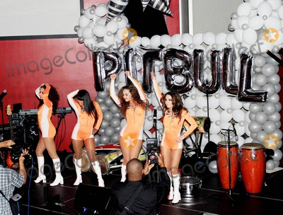 Ana Carolina da Fonseca Photo - Rapper Pitbull (aka Armando Christian Perez) celebrates his 30th birthday at Play nightclub with friends that included Mexican pop singer Cristian Castro former Major League Baseball player Sammy Sosa Brazilian-born actress Ana Carolina da Fonseca who surprised Pitbull when she walked out of a giant faux cake and Latin pop singer and actor Jencarlos Canela  Pitbull appeared to be in a great mood as he kissed and hugged Ana Carolina stuck out his tongue and posed with a comical sculpture of himself Pictured Dancers Miami FL 011511
