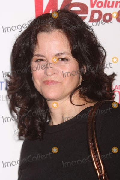 Ally Sheedy Photo - New York NY 11-16-2010Ally Sheedy at the 1st Annual WE DO GOOD AWARDS presented by WE tv and Ladies Home Journal at EspaceDigital photo by Lane Ericcson-PHOTOlinknet
