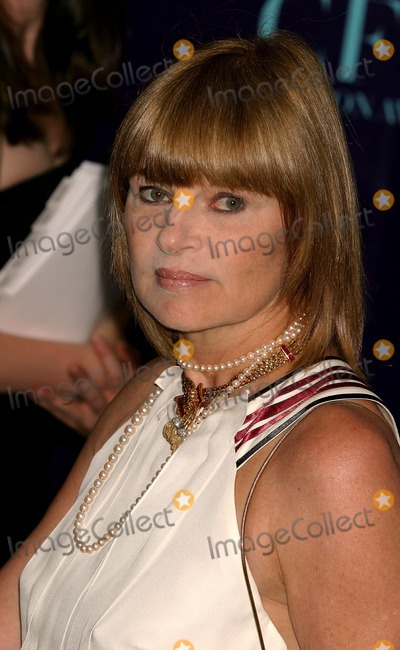 Ann McNally Photo - Anne Mcnally Arriving at the 2004 Cfda Fashion Awards at the New York Public Library in New York City on June 7 2004 Photo by Henry McgeeGlobe Photos Inc 2004
