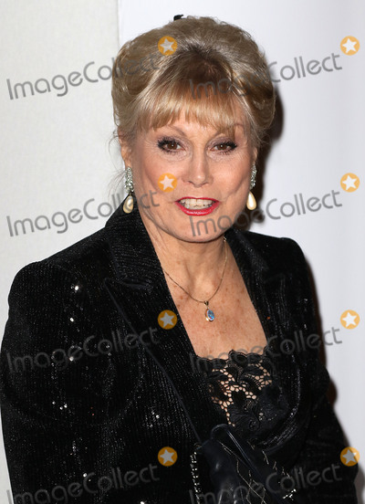 Angela Rippon Photo - October 21 2015 - Angela Rippon attending the Daily Mirror  RSPCA Animal Hero Awards 2015 at 8 Northumberland Avenue in London UK