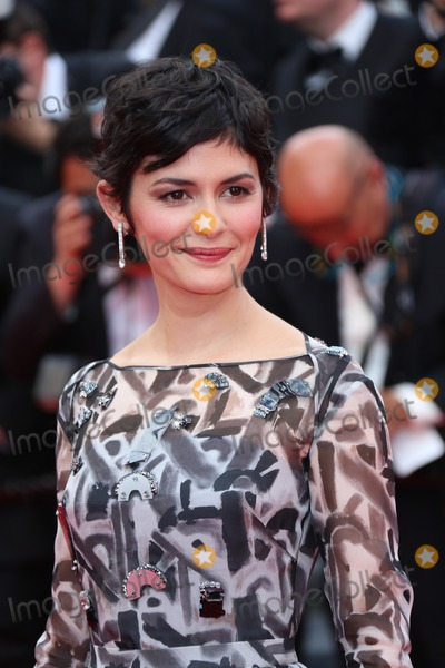 Audrey Tautou Photo - My 14 2014 CannesAudrey Tautou arriving at the opening ceremony and the Grace of Monaco Premiere at the 67th Annual Cannes Film Festival on May 14 2014 in Cannes France
