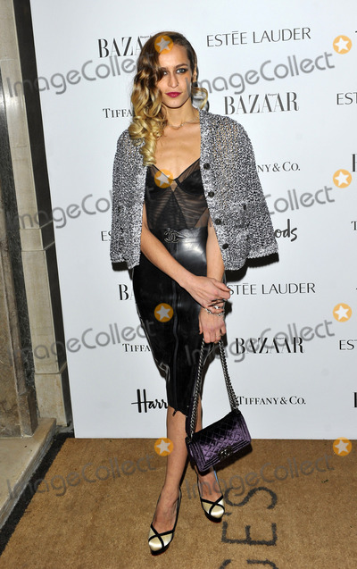 Alice Dellal Photo - October 31 2012 LondonAlice Dellal at Harpers Bazaar Women of the Year Awards held at Claridges on October 31 2012 in London