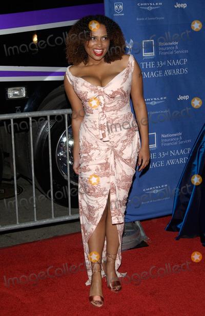 Lisa Nicole Carson Photo - Actress LISA NICOLE CARSON at the 33rd Annual NAACP Image Awards at Universal Studios Hollywood23FEB2002  Paul SmithFeatureflash