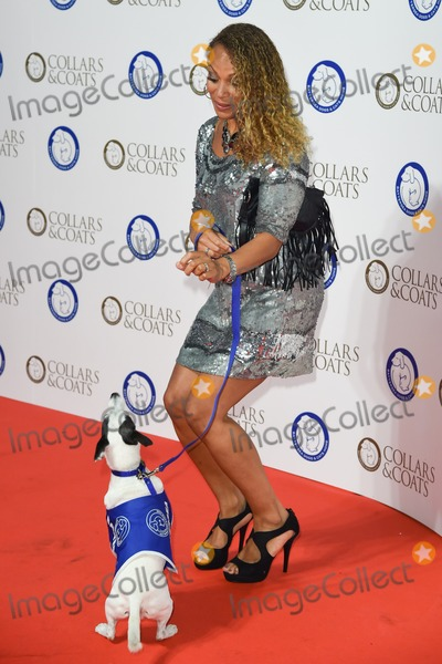 Angela Griffin Photo - Angela Griffin arrives for the Collars and Coats Gala Ball 2014 in aid of Battersea Dogs Home at Battersea Evolution London 30102014 Picture by Steve Vas  Featureflash