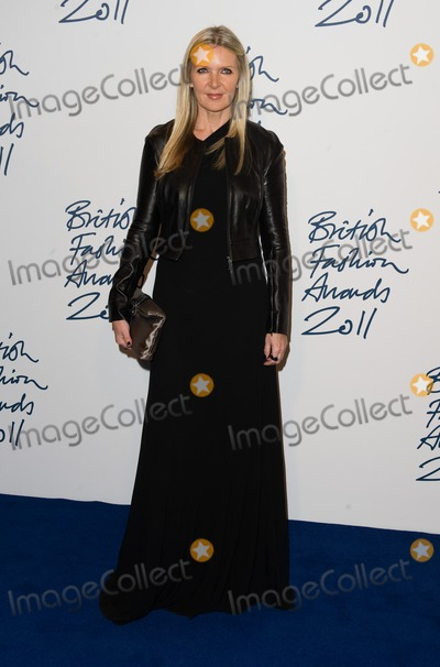 Amanda Wakeley Photo - Amanda Wakeley arriving for the 2011 British Fashion Awards at The Savoy London 28112011 Picture by Simon Burchell  Featureflash