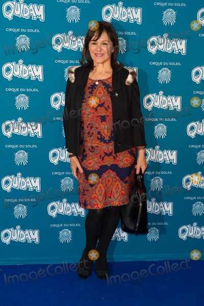 Arlene Phillips Photo - Arlene Phillips arrives for the Cirque du Soleil Quidam VIP press night at the Royal Albert Hall Kensington London 07012014 Picture by Dave Norton  Featureflash