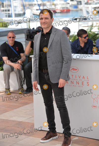 Alex Brendemuhl Photo - Actor Alex Brendemuhl at the photocall for From the Land of the Moon (Mal de Pierres) at the 69th Festival de CannesMay 15 2016  Cannes FrancePicture Paul Smith  Featureflash