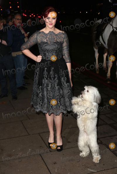 Ashleigh Butler Photo - Ashleigh Butler Pudsey arriving RSPCA Animal Hero Awards 2014 - Arrivals London 26112014 Picture by James Smith  Featureflash