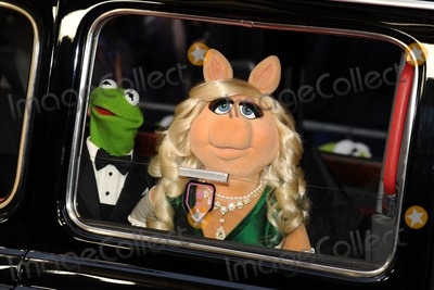 Miss Piggy Photo - Kermit and Miss Piggy arrives for the premiere of Muppets Most Wanted at the Curzon Mayfair cinema London 24032014 Picture by Steve Vas  Featureflash